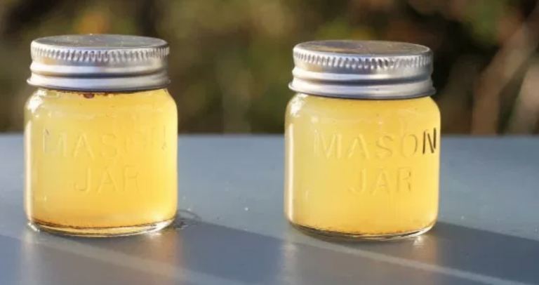 Apple Cider Vinegar Power Shot: A Better Alternative To